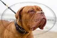 Collare in cuoio per Dogue de Bordeaux