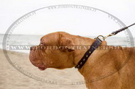 Collare in cuoio con borchie a piramide per Dogue de Bordeaux