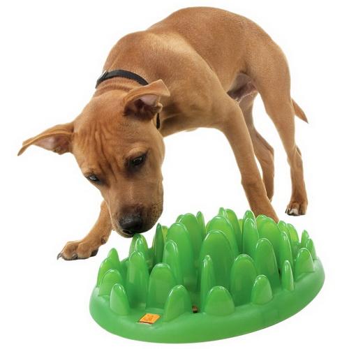 grande vente vente limitée élégant et gracieux Ciotola interattiva per cani di taglia piccola e media [KA16 ...